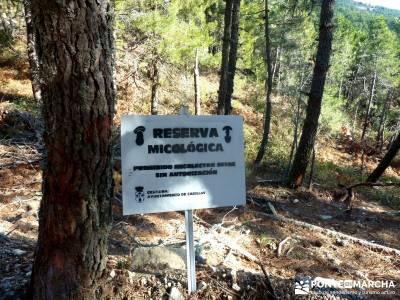 Valle Iruelas- Pozo de la Nieve; cercedilla piedralaves viajes de fin de semana puente club
